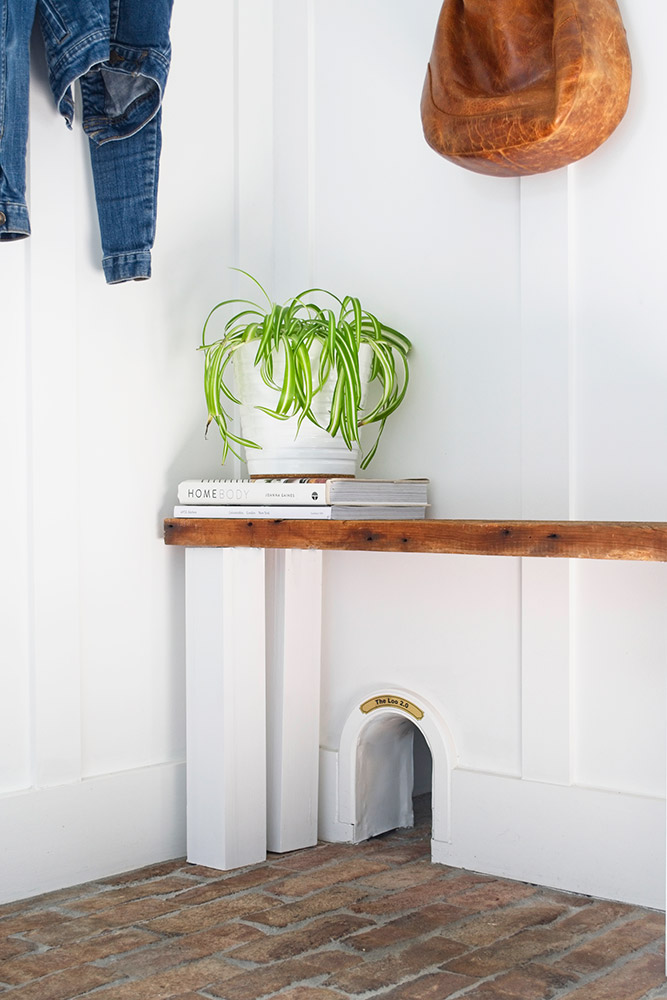 plant on bench with books reclaimed wood door