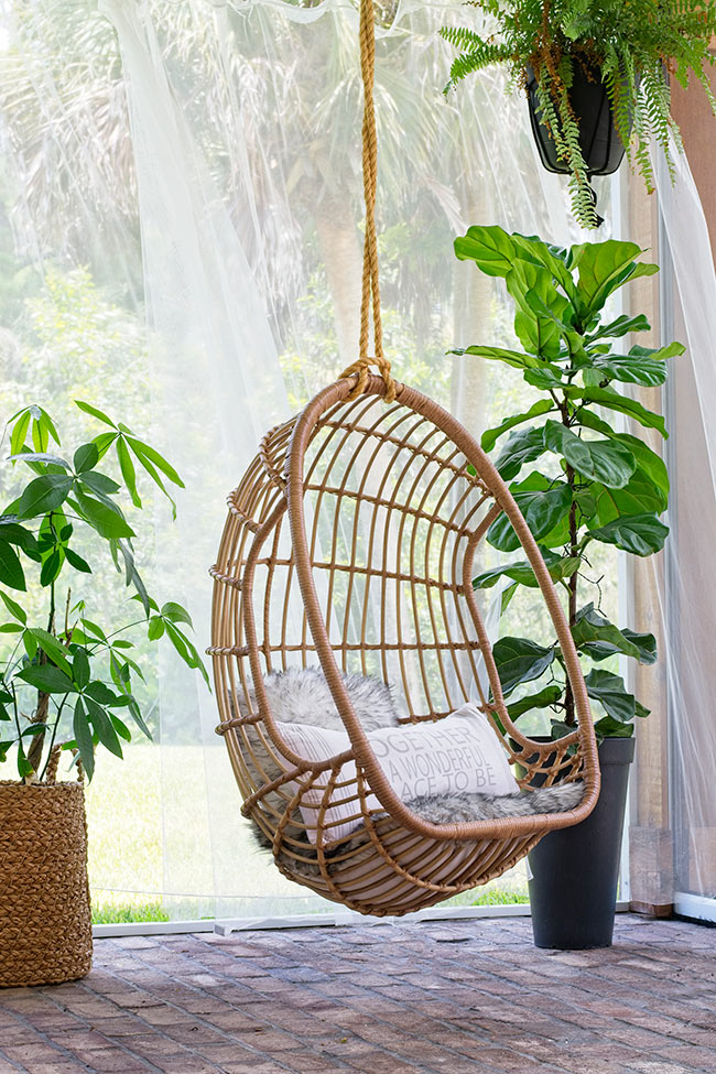 money tree in basket hanging chair on porch fiddle leaf fig in black planter