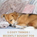 3 COZY THINGS I RECENTLY BOUGHT FOR OUR MASTER BEDROOM